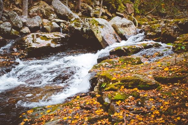 DSC 0052 Осеннее Приморье   водопады, Фалаза и кусочек моря