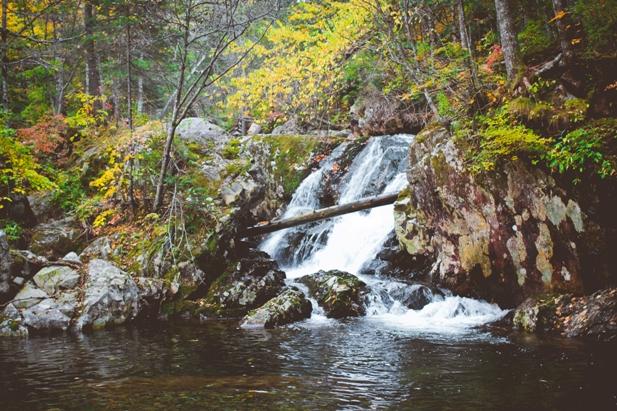 DSC 0054 Осеннее Приморье   водопады, Фалаза и кусочек моря