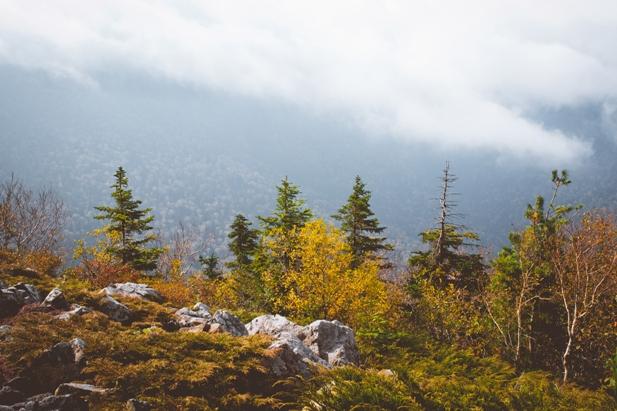 DSC 0073 Осеннее Приморье   водопады, Фалаза и кусочек моря
