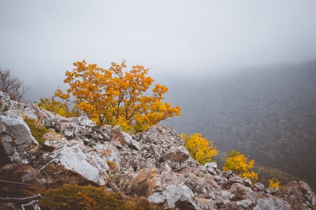 DSC 0101 Осеннее Приморье   водопады, Фалаза и кусочек моря