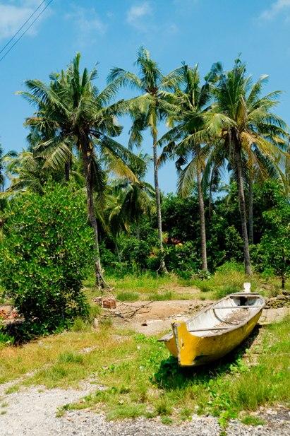 DSC01248 С Бали на Нуса Ленбонган