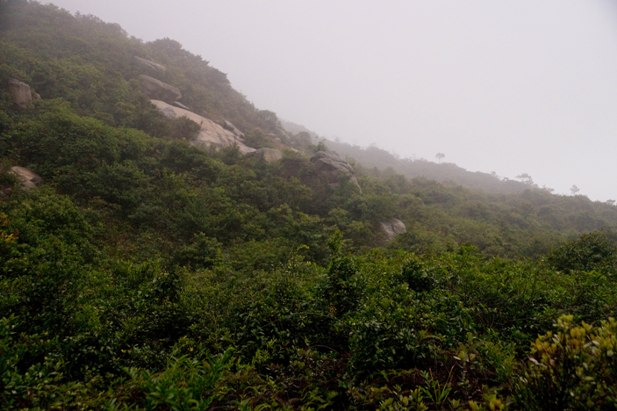 DSC09342 Гонконг. Продолжение