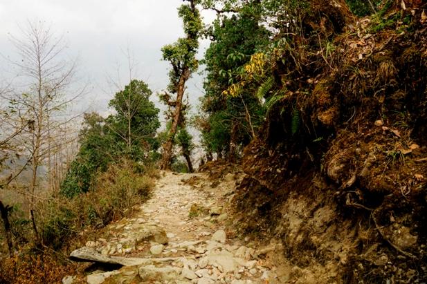 DSC02977 Трек к EBC: Katmandu   Lukla (часть 1)