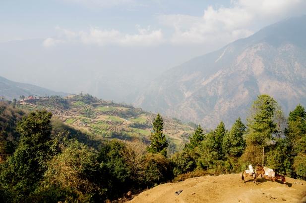 DSC02993 Трек к EBC: Katmandu   Lukla (часть 1)