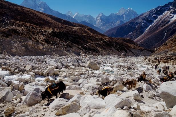 DSC03145 Трек к EBC: Dingboche   Everest base camp   Pheriche (часть 3)