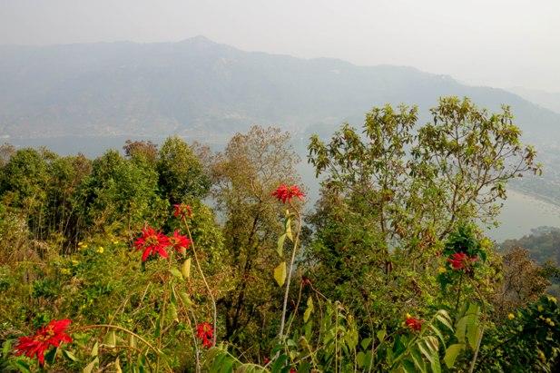 DSC03282 Моя любимая Покхара